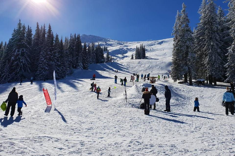 Витоша зимен фест
