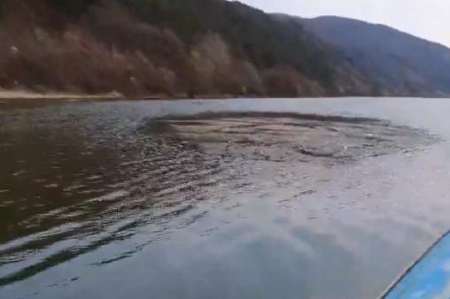 Замърсяване на езерото Панчарево