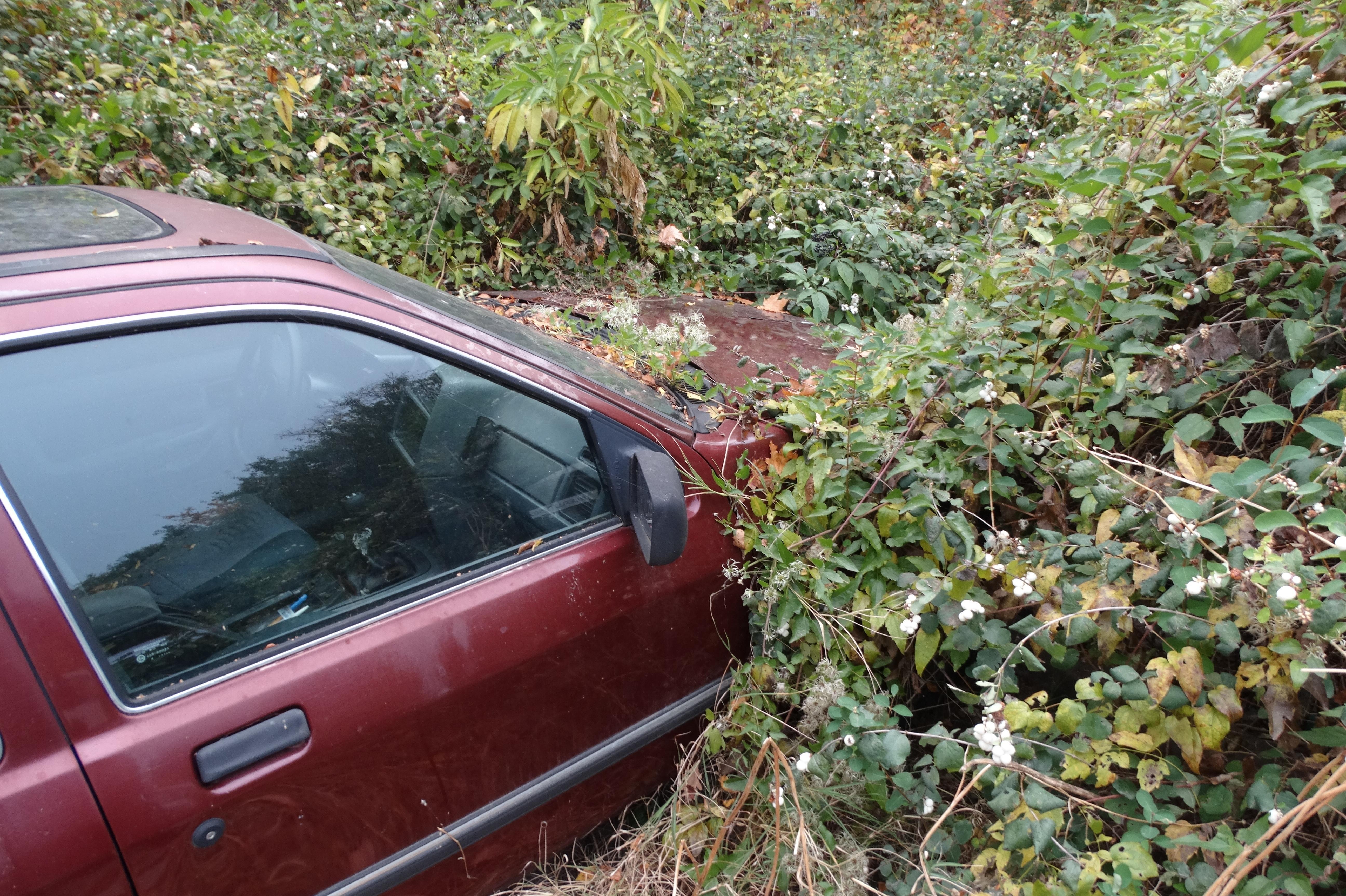 Изоставени автомобили в София