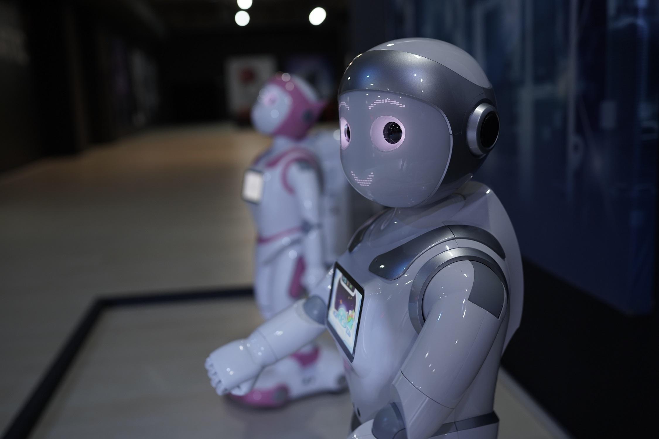 роботчета
