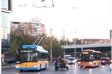 Каруца на 4-км в София