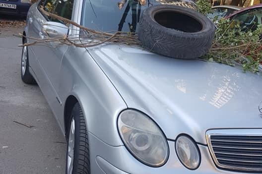 Затрупаха с клони и гума кола в Полигона