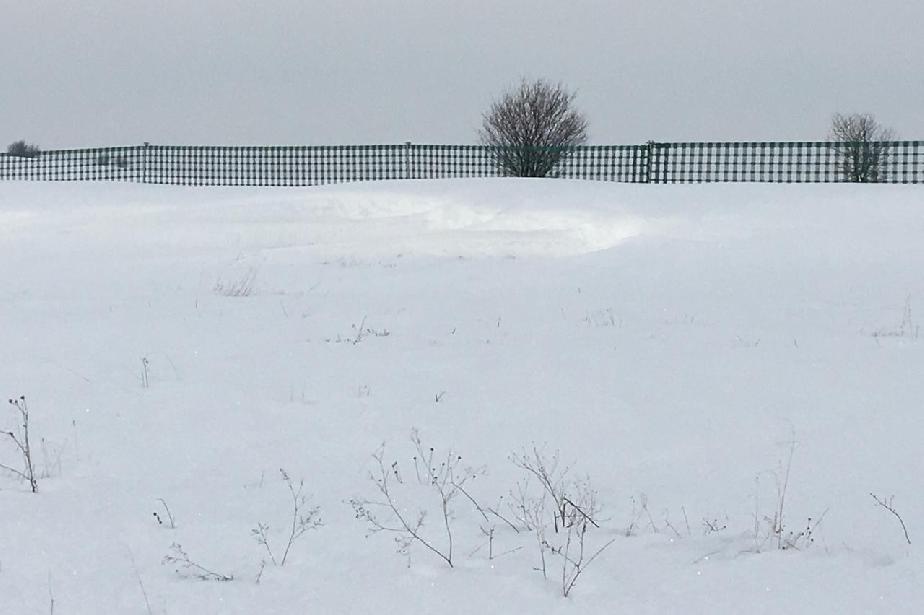поставяне на снегозащитни мрежи по пътя към село Клисура, район Банкя