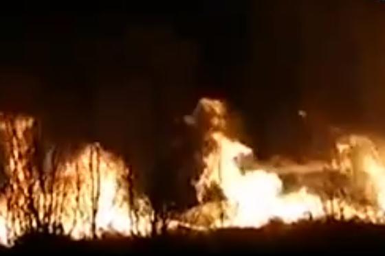 Пожар изпепели Драгоманското блато