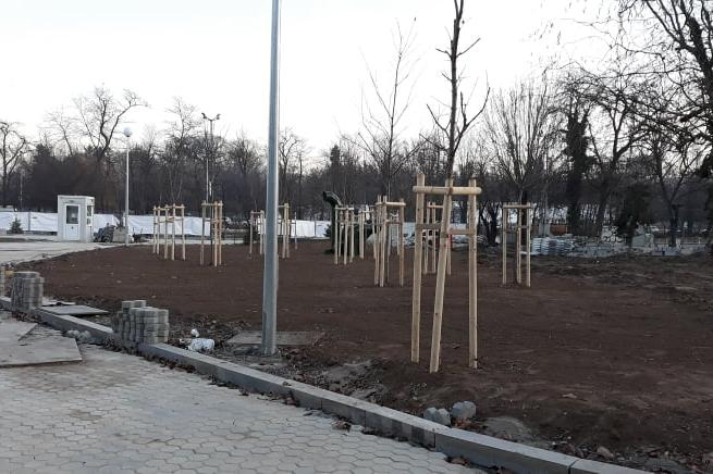 "Засадиха млади дръвчета над метростанция ""Орлов мост"""
