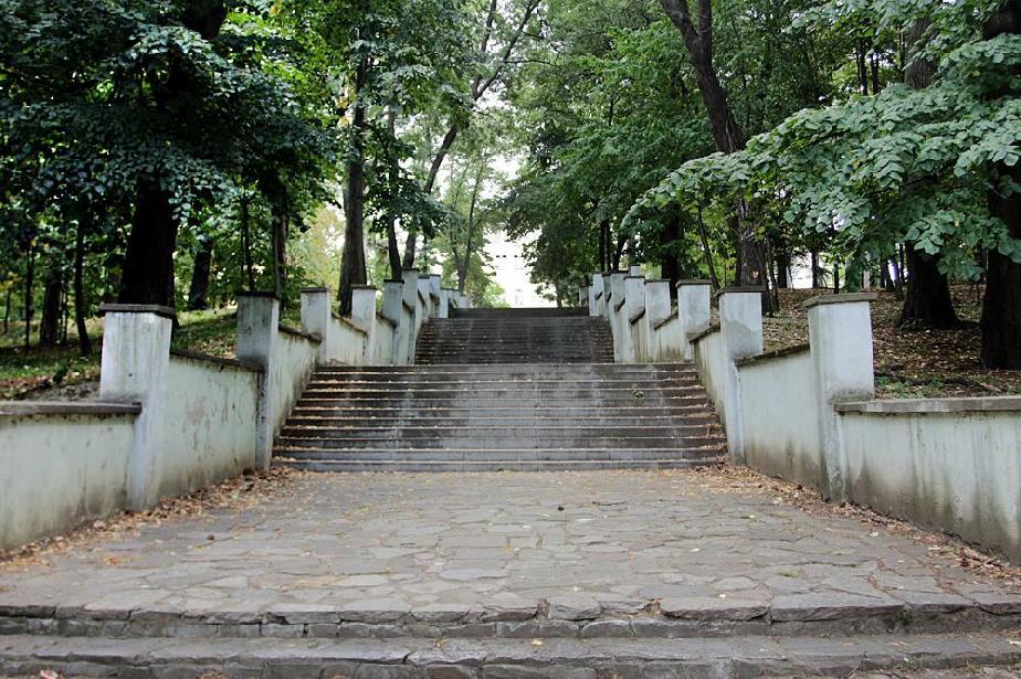 паркове
