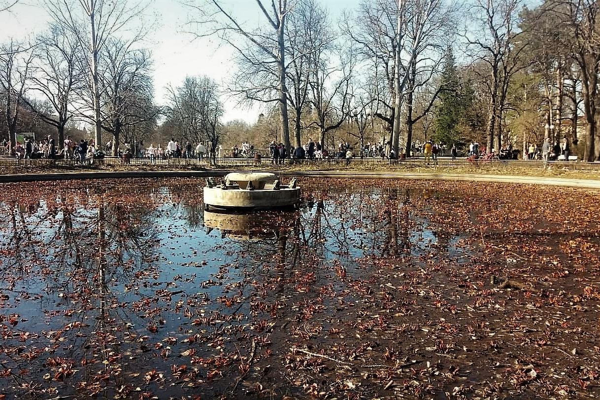 Езерото с лииите в Борисовата градина