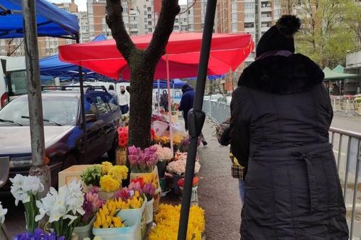 """Търговци на """"Димитър Петков"""": Ще отидем с цветята при властимащите"""
