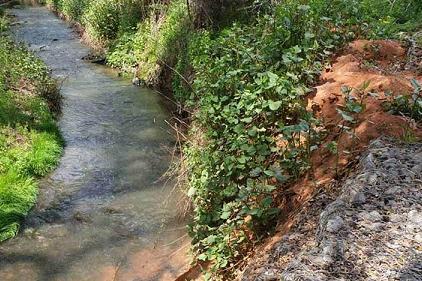 Разбра се кой е замърсителят на река Новачица