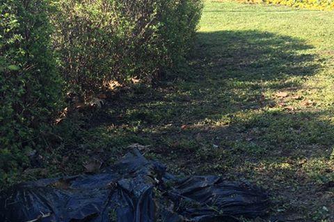 """Засипаха с отпадъци и стъкла красива градинка в """"Триадица"""" (СНИМКИ)"""