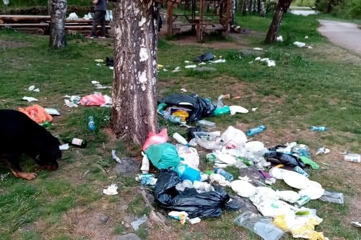Камари с боклуци в гората край Бистрица и Железница