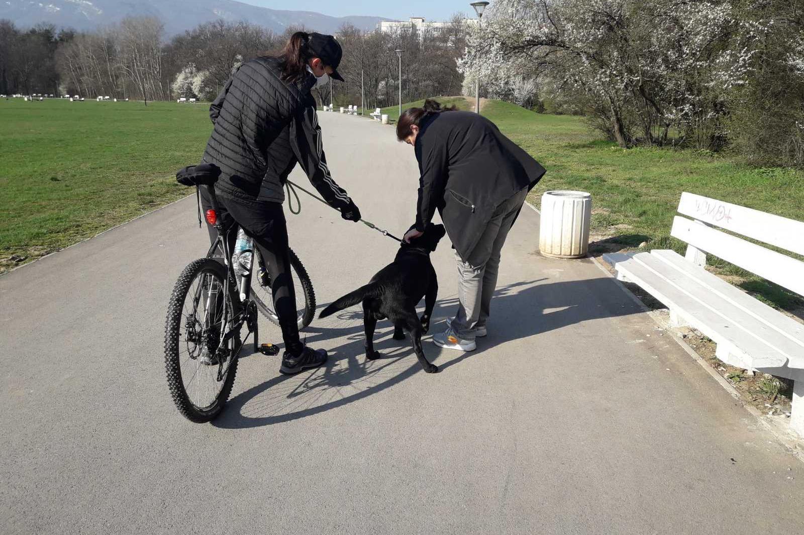 Повече от 700 стопани на кучета проверени след отварянето на парковете в Со