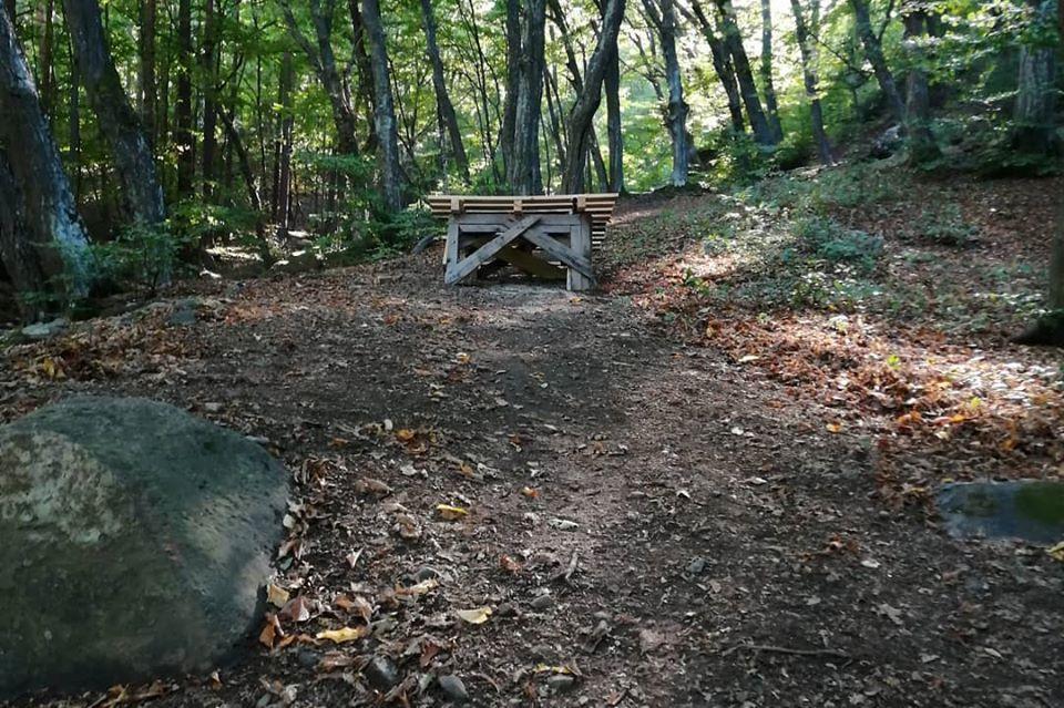 Отварят Витоша: Столична община и СДВР ще контролират движението към планин