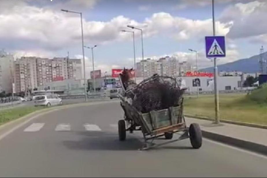 Каруца на 3 колела препуска по Околовръстното на София