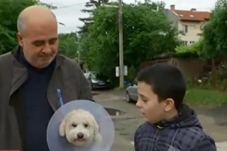 Куче нахапа 10-годишно дете в столичния Горна баня
