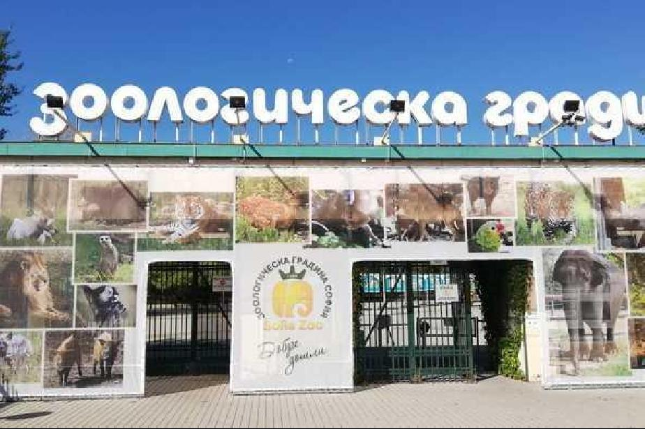 На 1 юни вход свободен в Зоопарка на София
