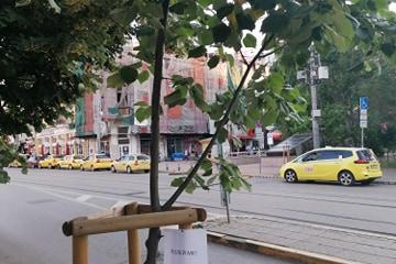 Фейсбук група стартира иницативата #Полей ме в София
