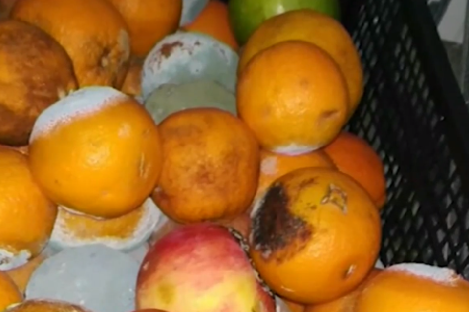 """Пациентите в """"Пирогов"""" и """"Шейново"""" яли развалена храна от фирма доставчик"""
