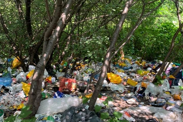"""Незаконно сметище притеснява живеещите в бл. 23 в """"Дианабад"""""""