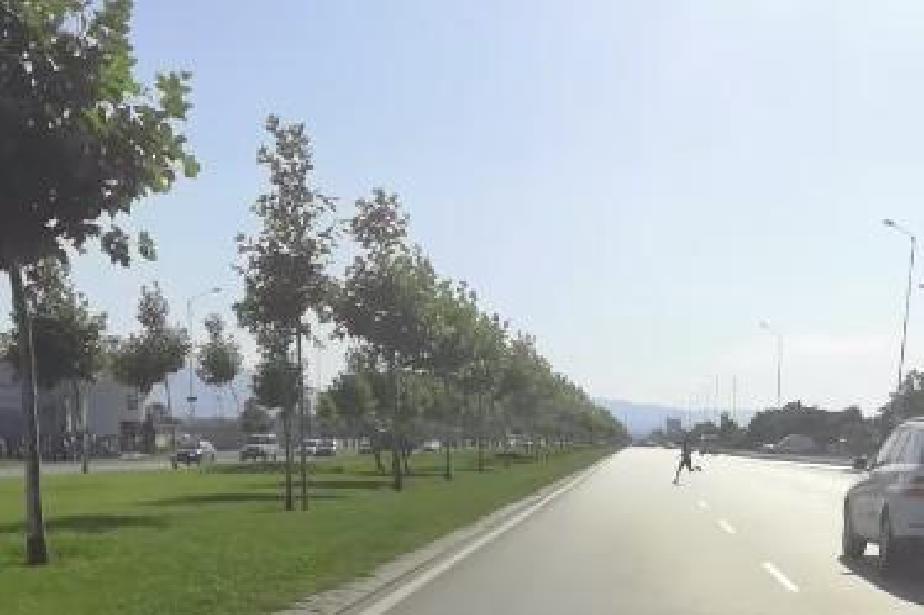 Ром бяга пред колите по Ботевградско, гони си коня