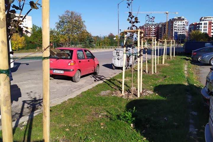 "В парк ""Сухото дере"" засадиха 30 броя червенолистен явор"