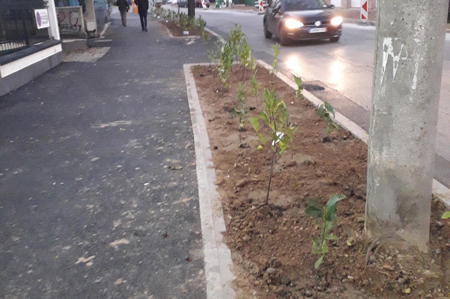 Нова градинка радва столичани в Редута (СНИМКИ)