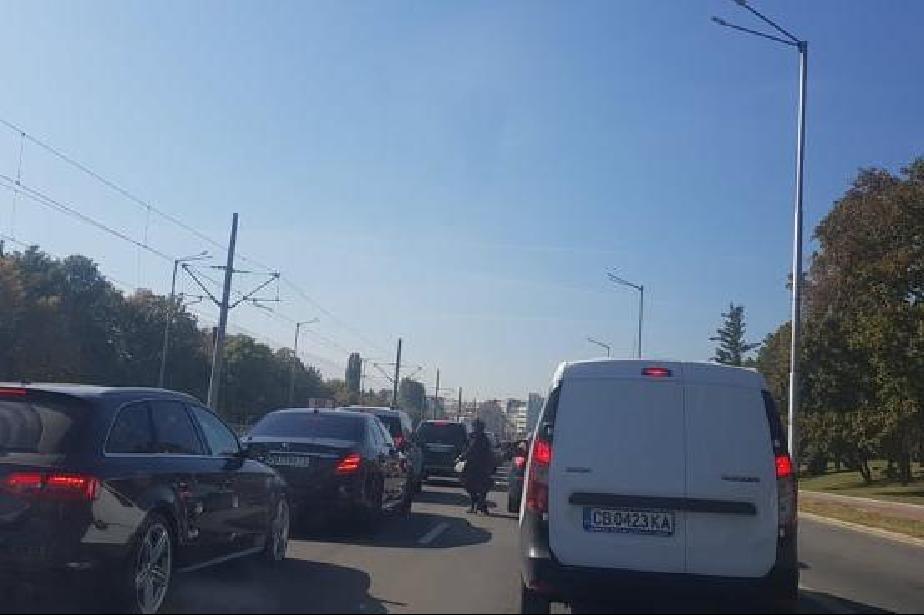 """Колона от автомобили задръсти булевард """"България"""""""