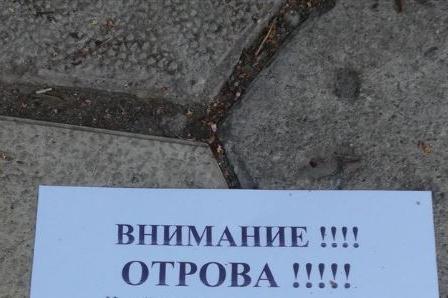 """Столичанка предупреди за разхвърлена отрова  в градинката до зала """"Триадица"""
