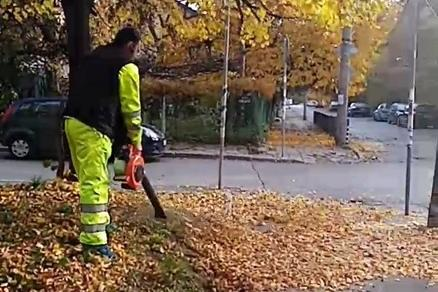 "Механично чистят шумата в ""Изгрев"""