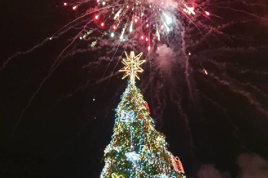 Коледната елха на София ще светне на 30 ноември пред НДК