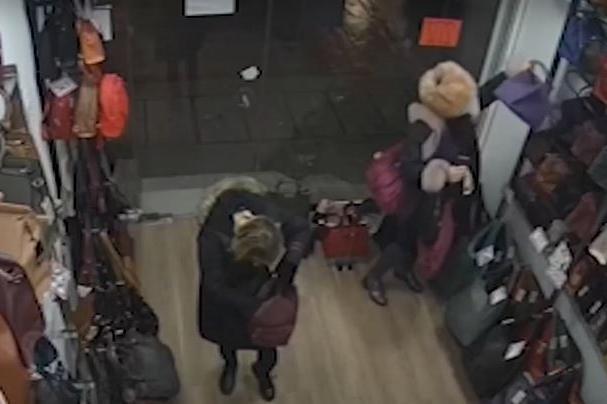 Столичанка краде дамски чанти (СНИМКИ)