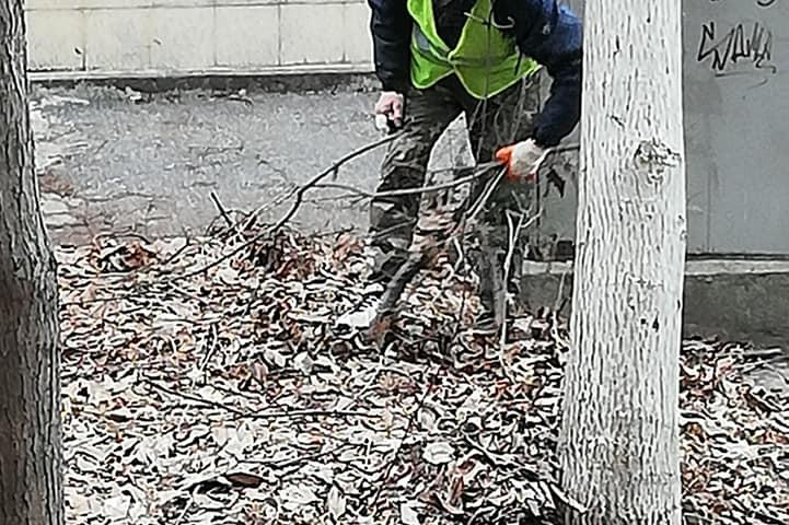 "При минусова температура младежи изчистиха градинка край бул. ""Александър М"