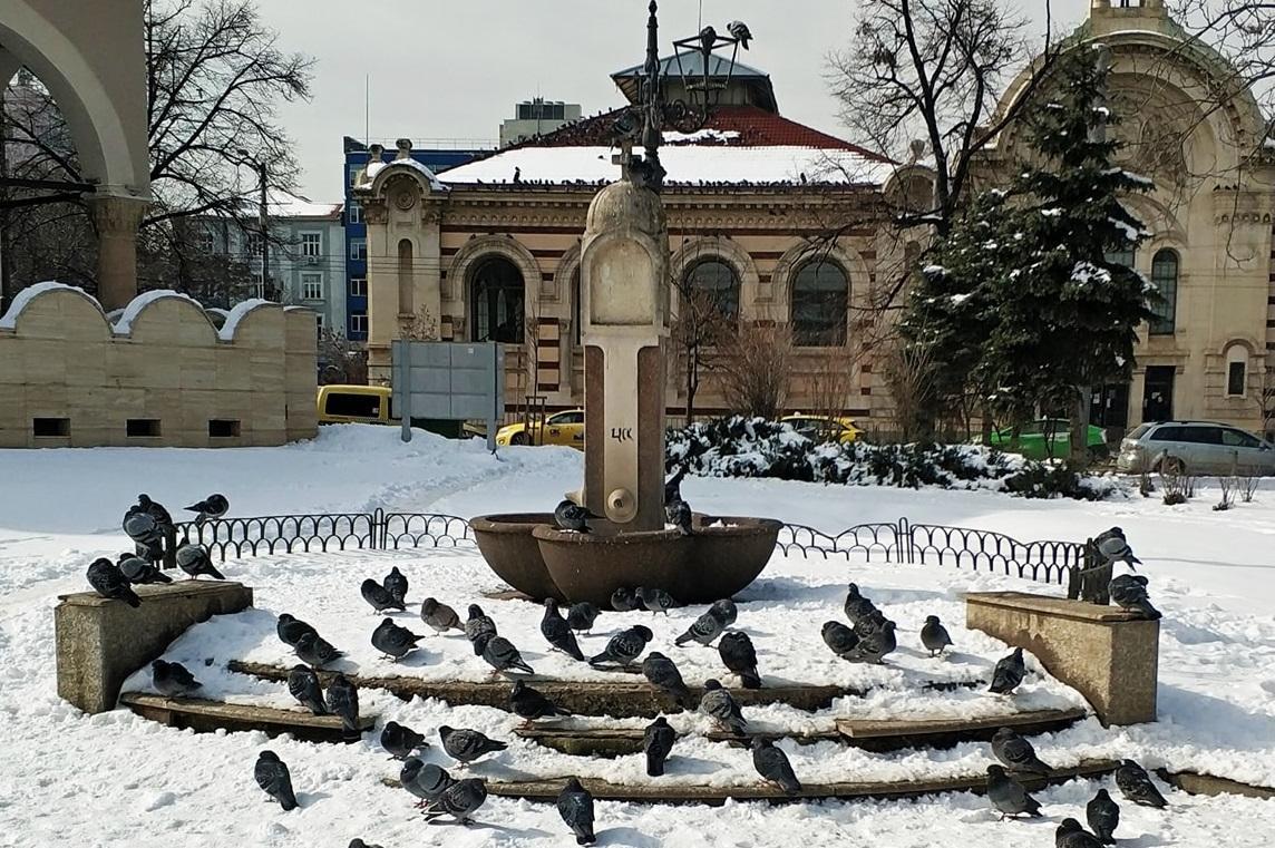 Новините в София: Най-важното за деня 21 февруари 2021 г.