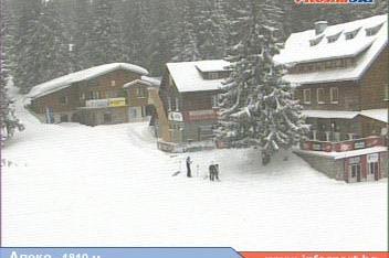 Автобусите на ски училищата и автомобили с вериги ще се пускат до Златните