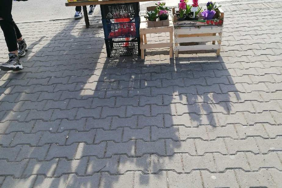 Двама търговци на цветя бяха глобени до спирка Плиска