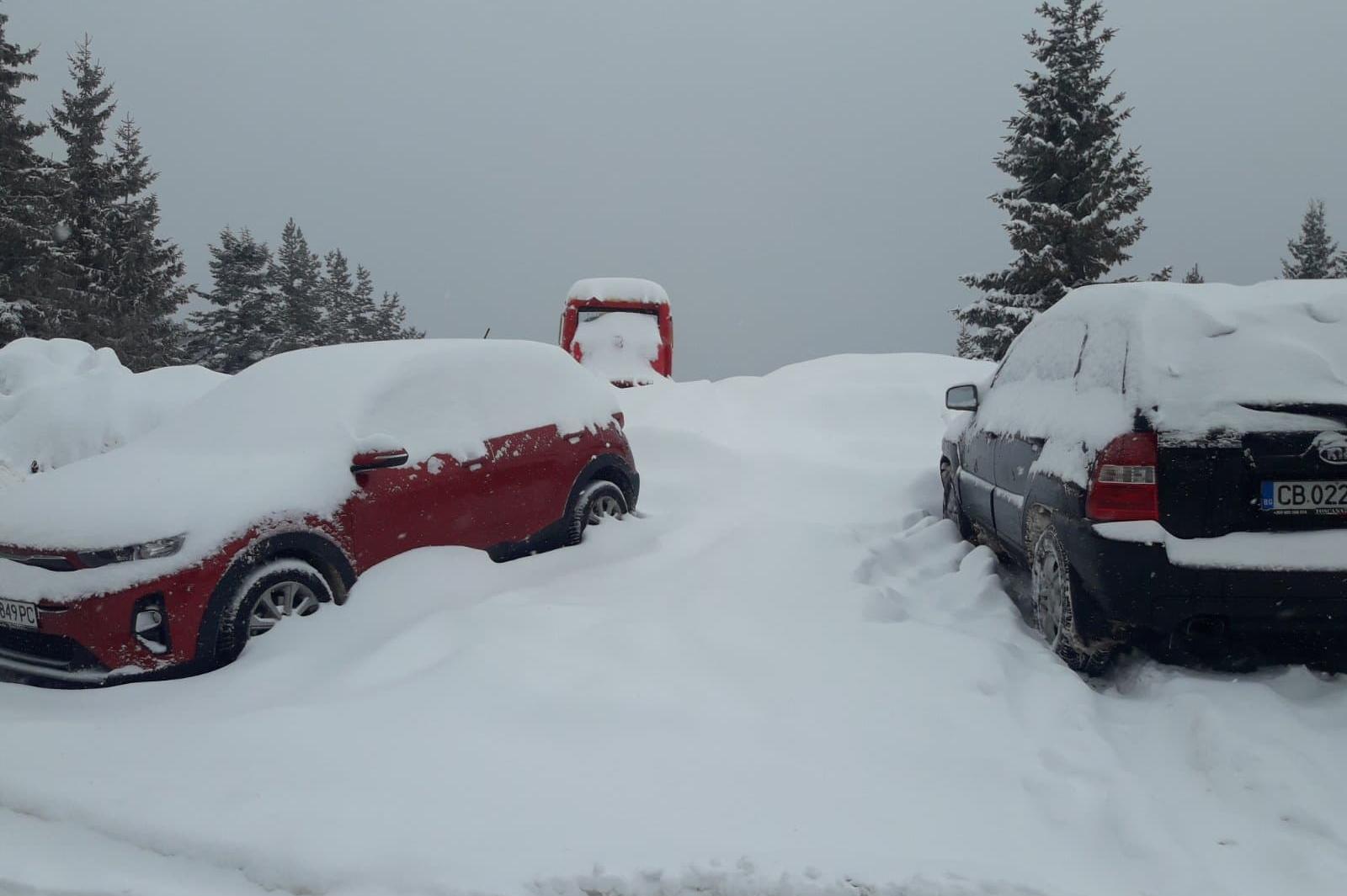 Отворен е пътят Драгалевци - Алеко, отново има интензивен снеговалеж на Вит