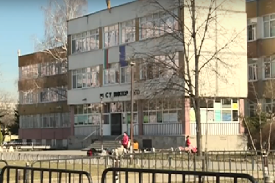 В училищен двор в София: Бездомно куче ухапа 12-годишно момиче