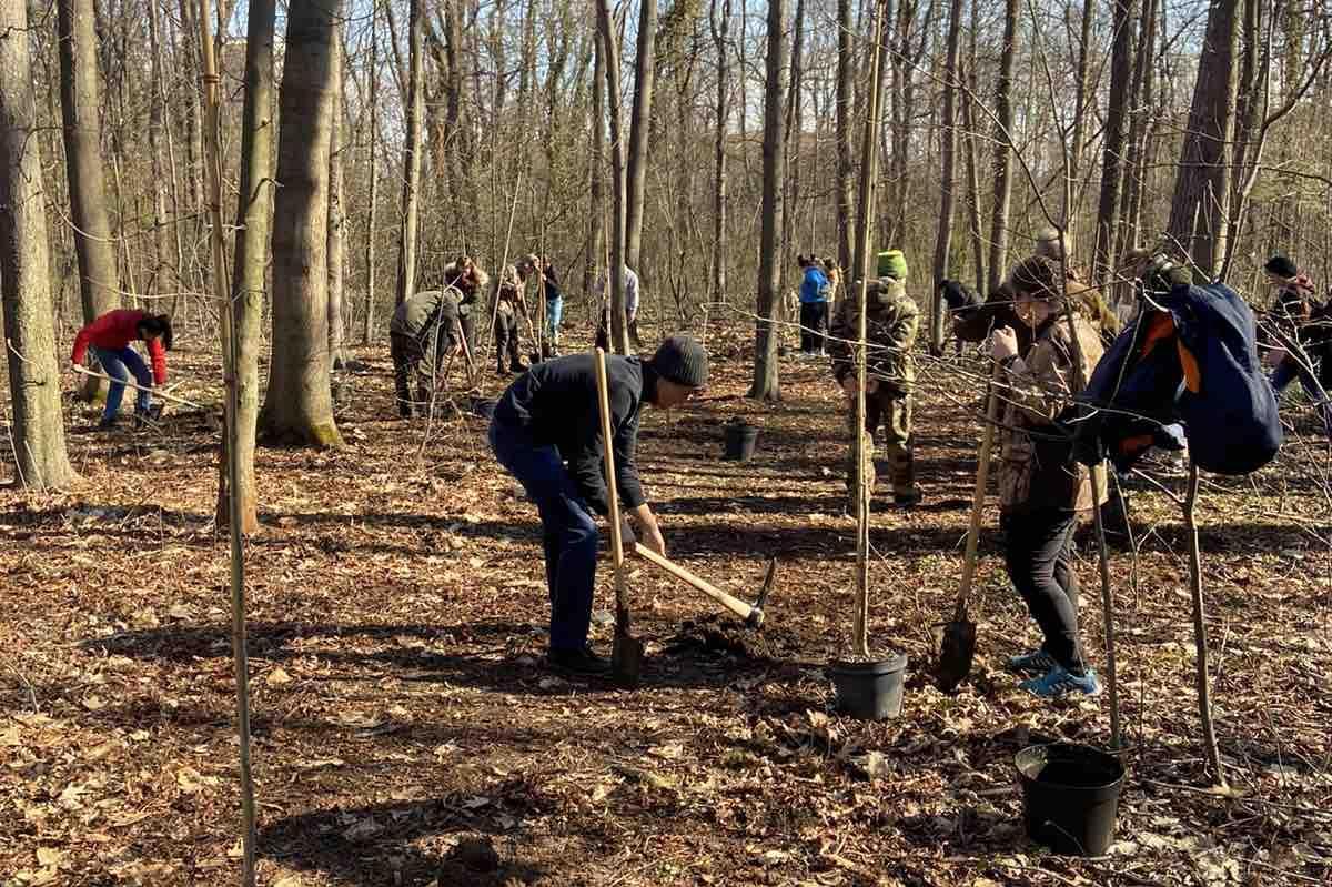 """Студенти от Лесотехническия засадиха 25 фиданки в """"Борисовата градина"""""""