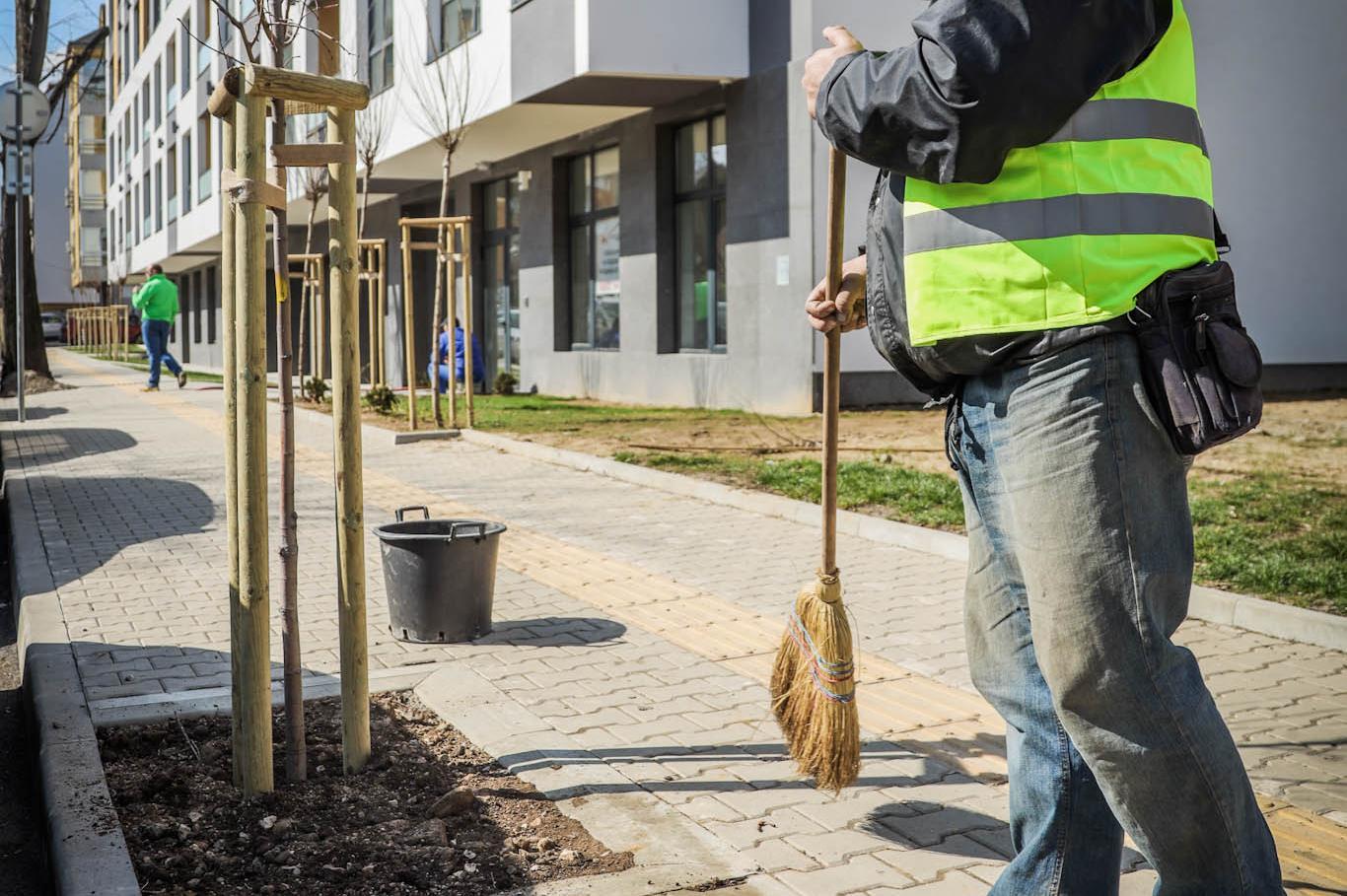 Тази пролет в София ще бъдат засадени общо 1700 дървета