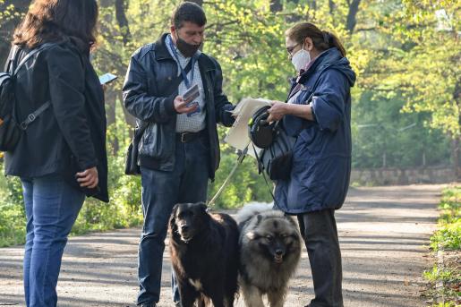 В София: На 50 кучета се пада по една площадка за разходки