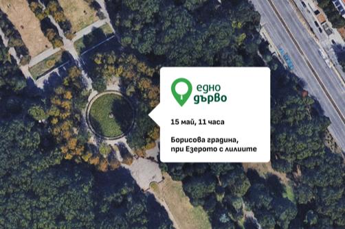 Картирането на дървета в София започва с Борисовата и Княжевската градина,