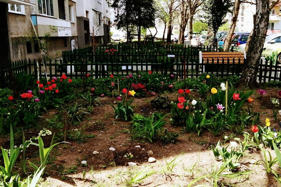 Пролетното ухание на София - цветя, зеленина и фонтани