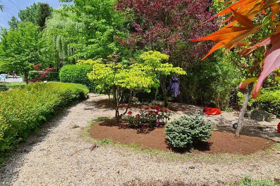"""""""Такеда"""" подкрепя финансово обновяването на Японската градина в столичния з"""
