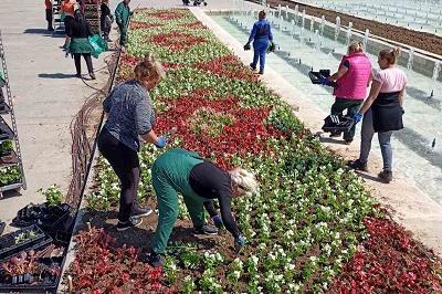 Засаждат летни цветя в парковете на София
