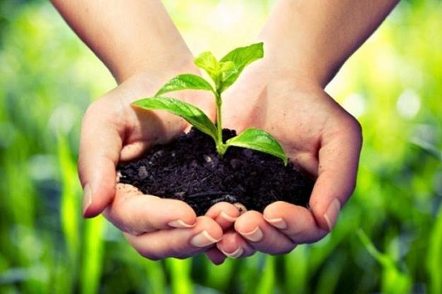Столичен инспекторат с редица инициативи за Световния ден на околната среда
