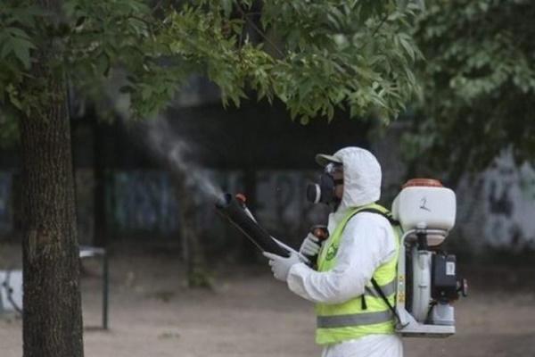 В София стартират обработки на зелени площи срещу комари и бълхи