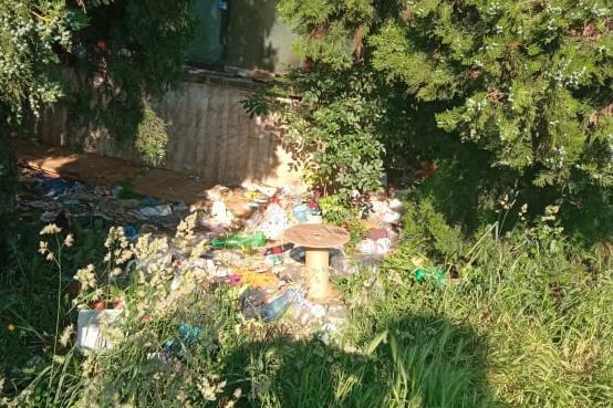 Сигнал до Столица.bg: Камара с боклуци вонят в градинка край НДК