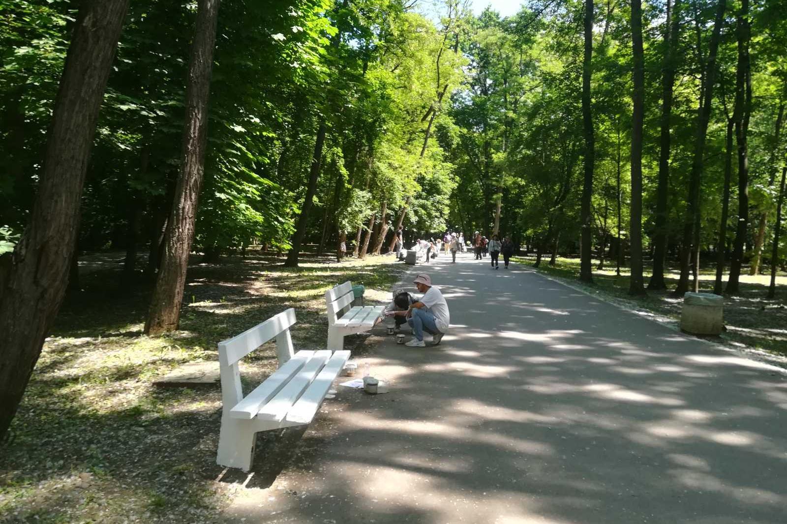"Добротворци: Служители на  ""Смил България"" боядисаха десетки  пейки в Южния"
