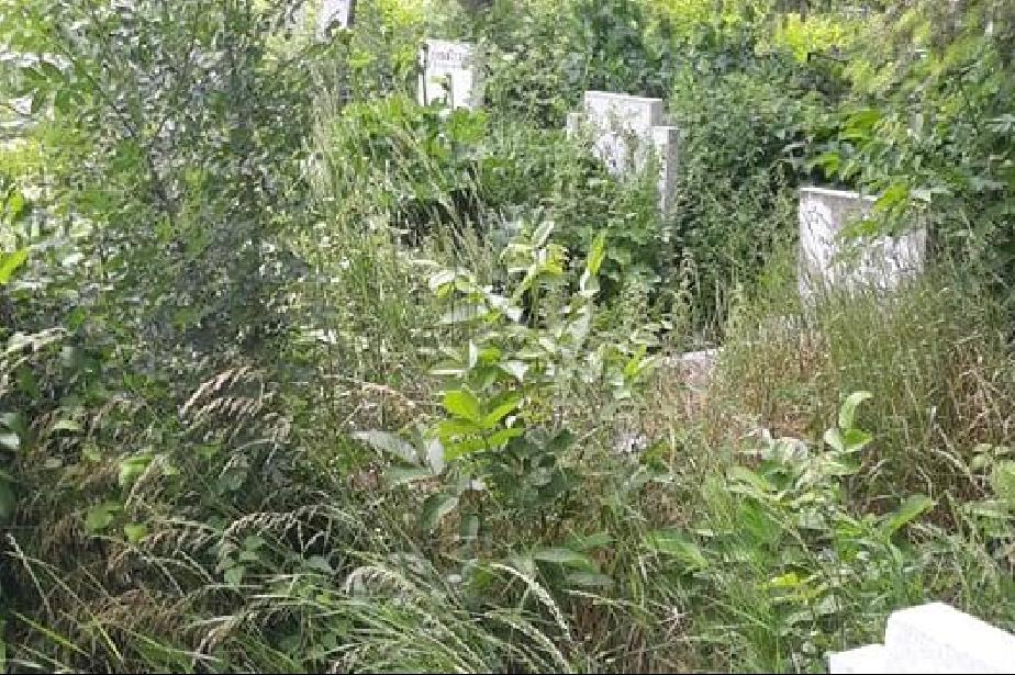 """Преди Черешова Задушница: Гробищата в """"Малашевци"""" се превърнаха в джунгла ("""