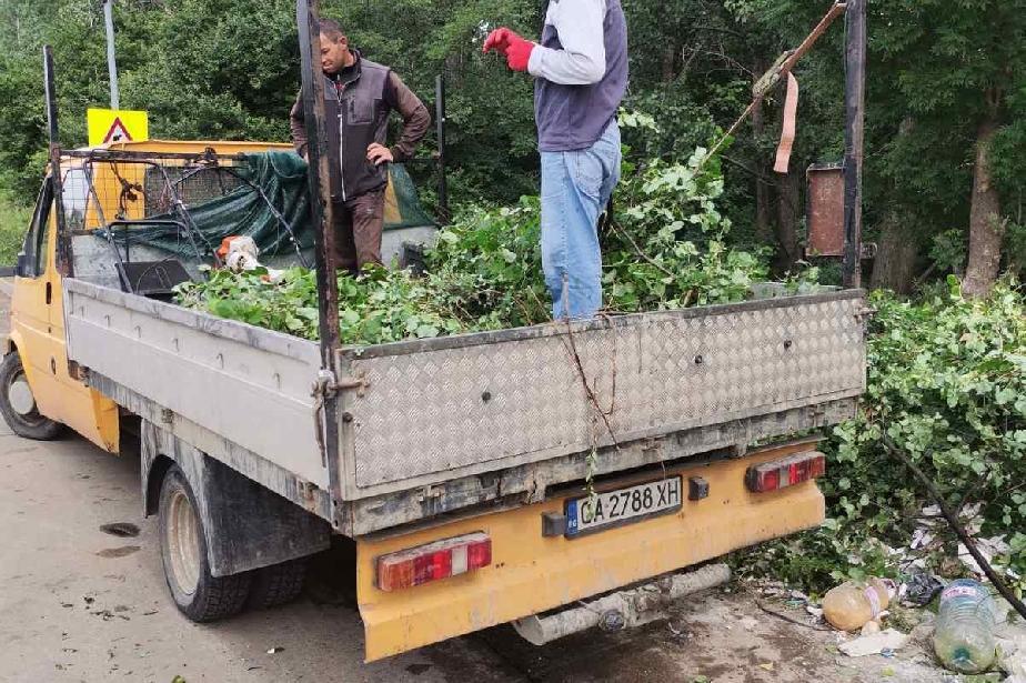 Глобиха нарушител за изхвърляне на клони и трева в село Бистрица